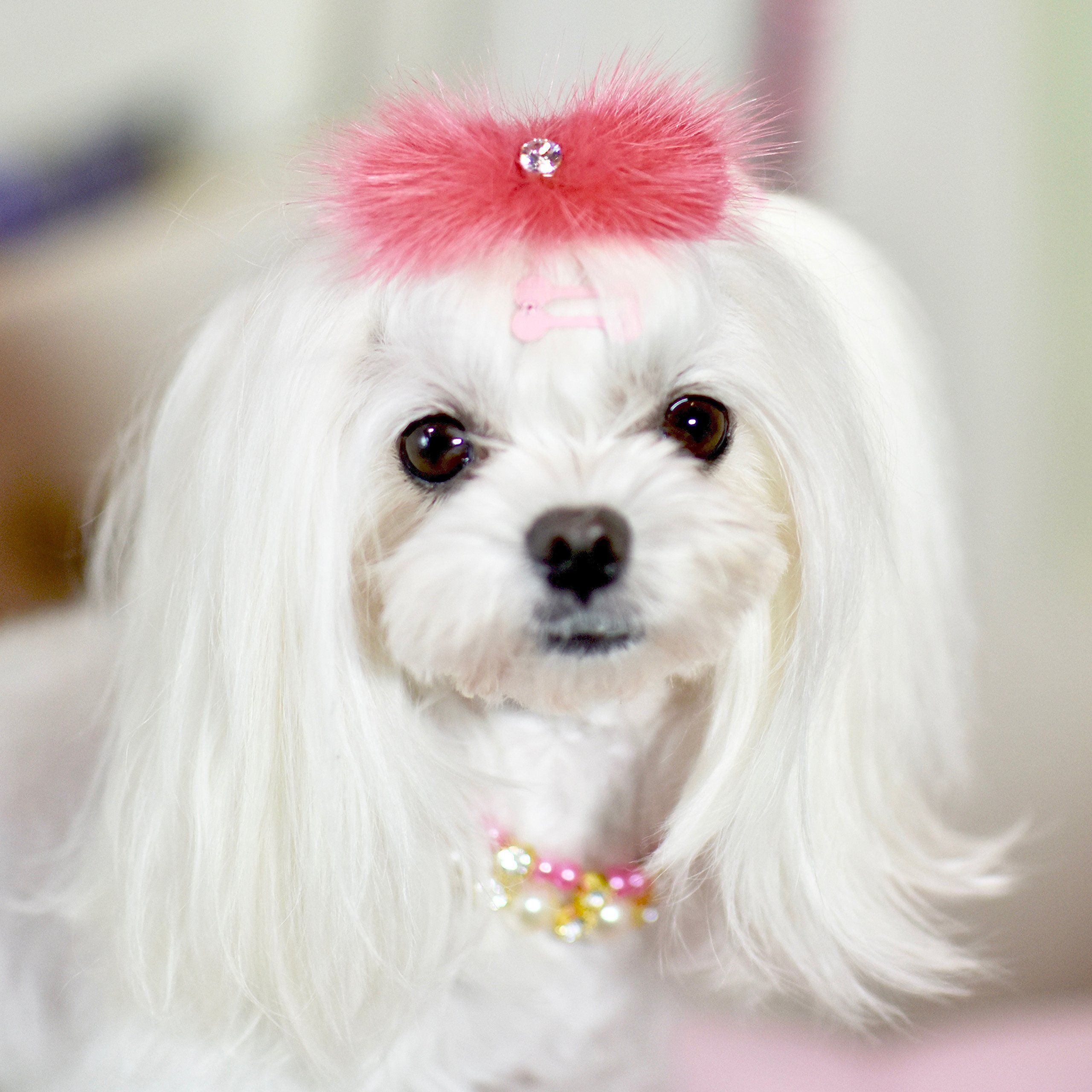 Hot Pink Mink And Crystal Fur Hair Clip For Maltese Dog Puppy Mink