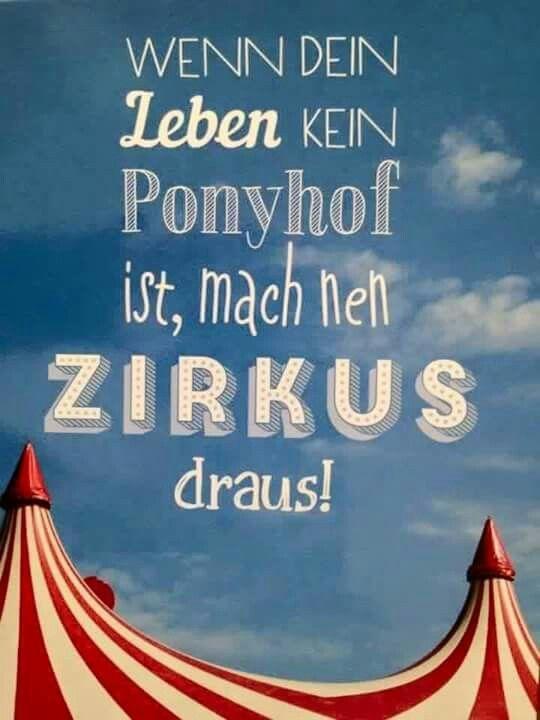 Wenn Dein Leben Kein Ponyhof Ist Mach Ein Zirkus Daraus