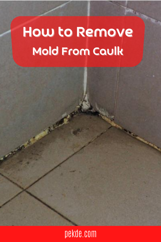 06340551d5d4e8b51bec17bc52d0e426 - How To Get Rid Of Red Mold In Bathroom