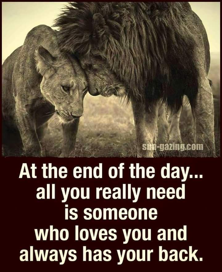 Trust Having Someone S Back When Things Are Not Rosey Anyone Can Stand Behind You When Things Are Well Viking Quotes Got Your Back Quotes Lion Quotes