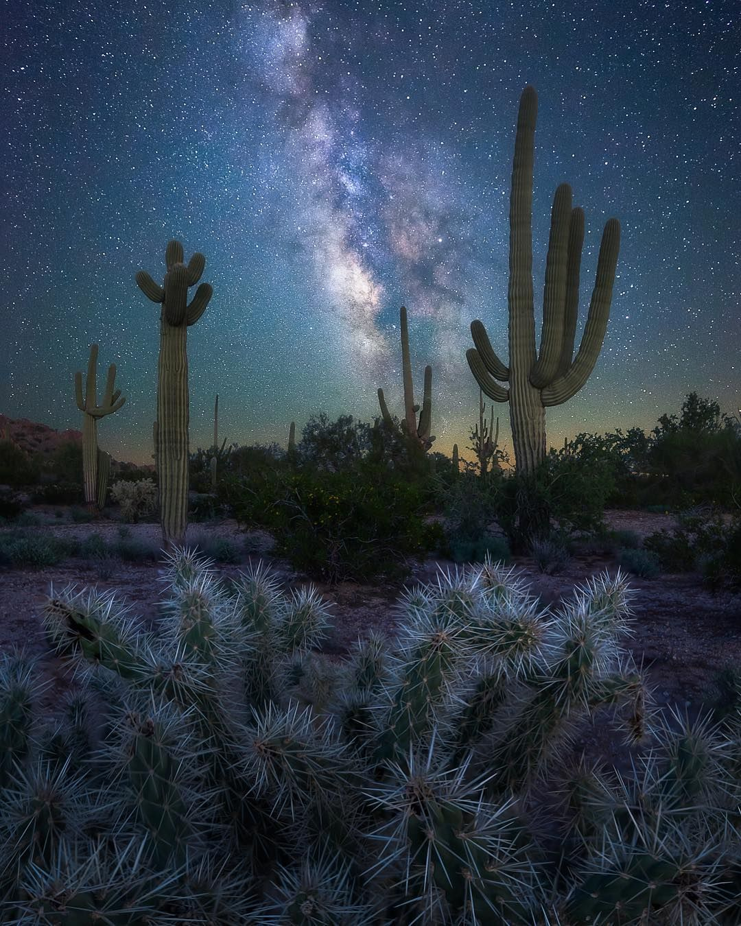 Brandon Erdman On Instagram Day Turns To Night And The Desert Becomes Magic Sonoran Desert Night Sky Photography Travel Photography Nature