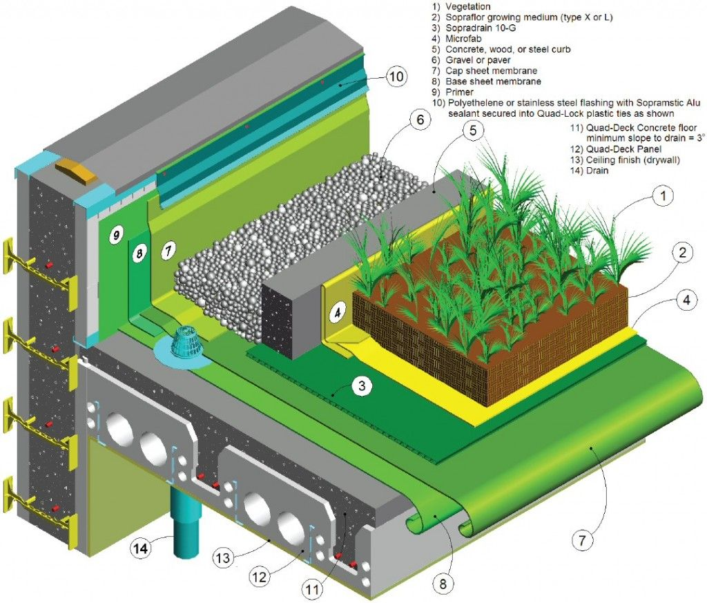 Green roof detail creative architectural ideas for Construction design