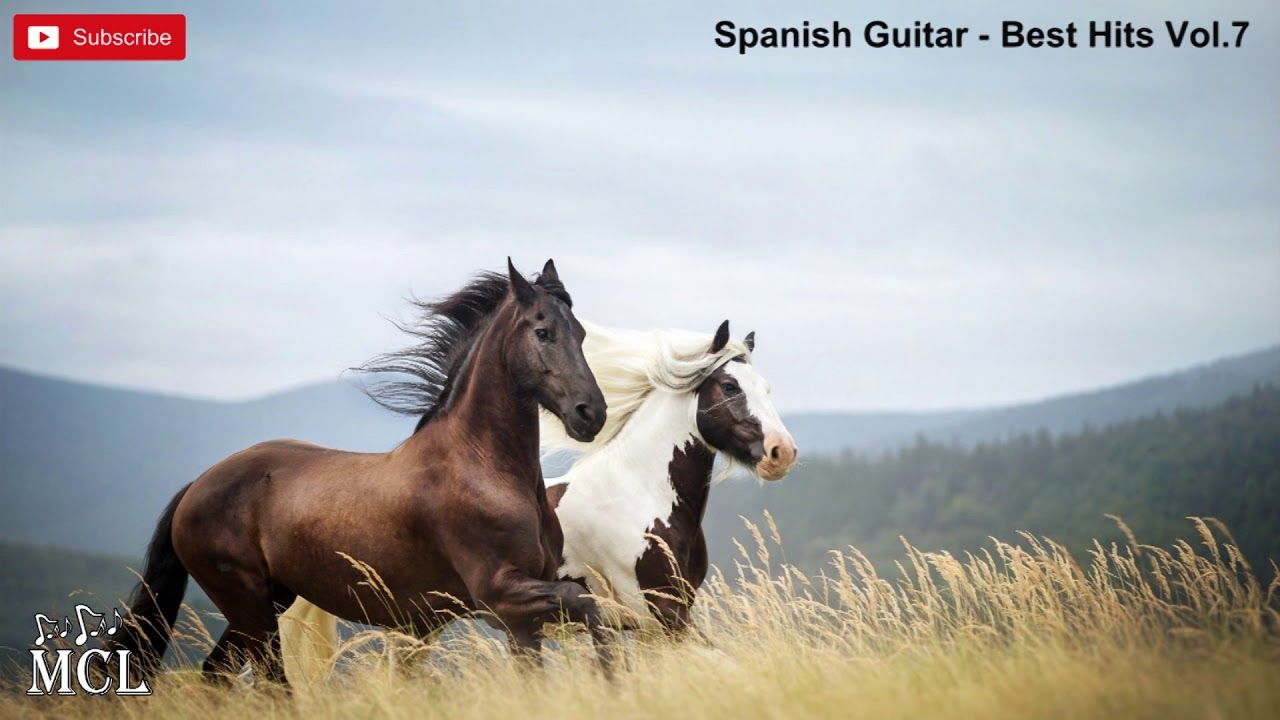 Spanish Guitar Best Hits Vol 7 Horses Horse Pictures