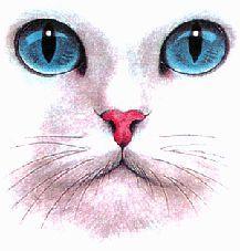 Schemi Punto Croce Free Muso Di Gatto Dipinti Gatto Arte Del Gatto Arte Animale