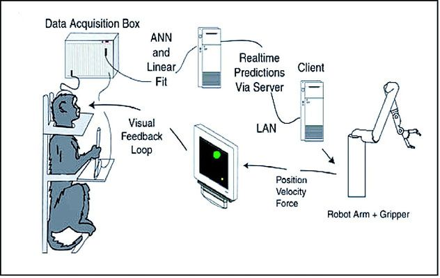 Brain-computer_interface_(schematic)jpg (632×400) Interface - Forensic Report
