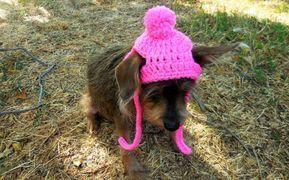 Small Dog/Cat Crochet Beanie Pattern
