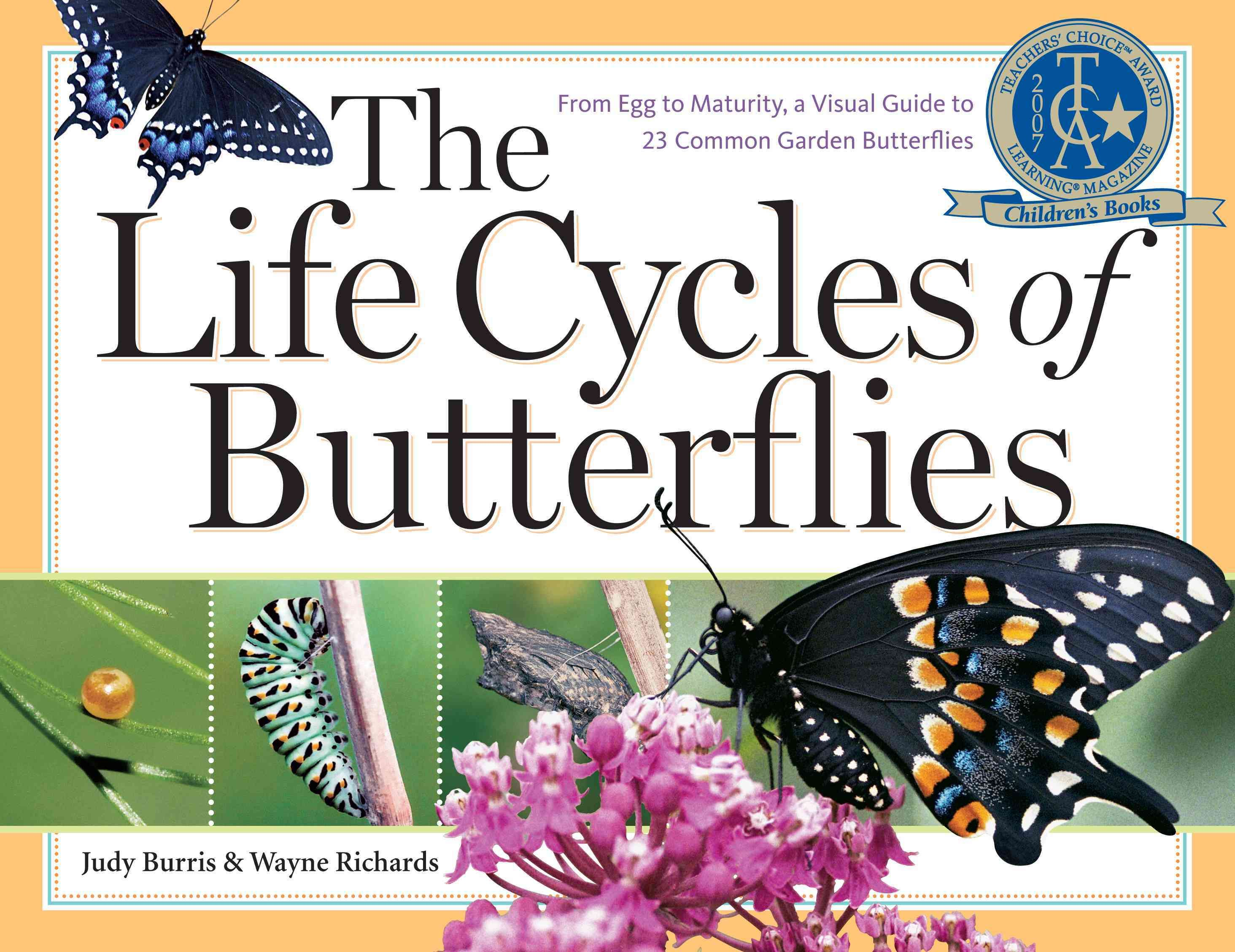 The Life Cycles of Butterflies: From Egg To Maturity A Visual Guide ...