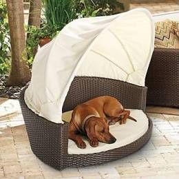 Outdoor Wicker Pet Bed With Canopy Large Frontgate Dog