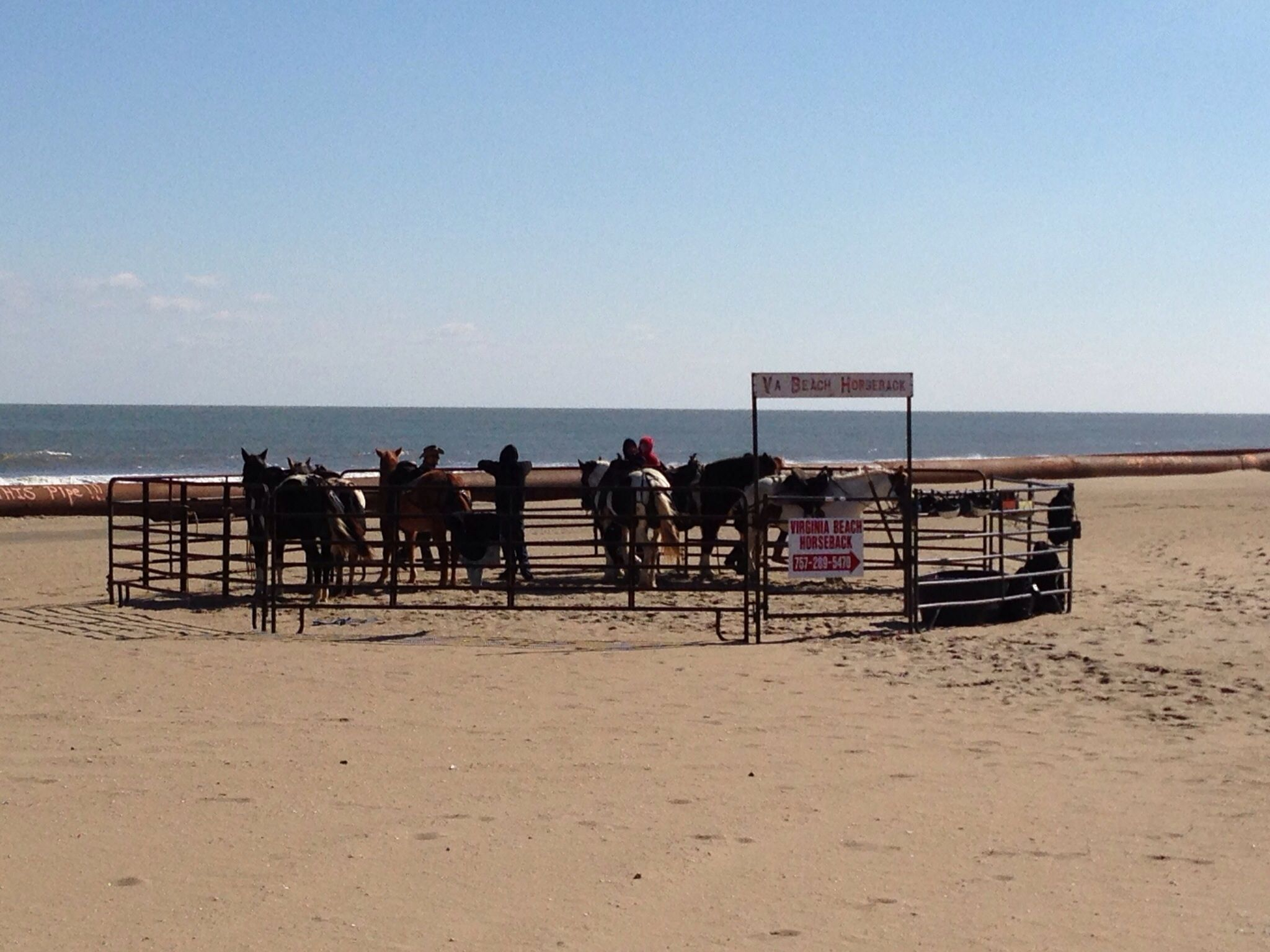 Can Go Horseback Riding On The Beach Cool Bike Path Virginia