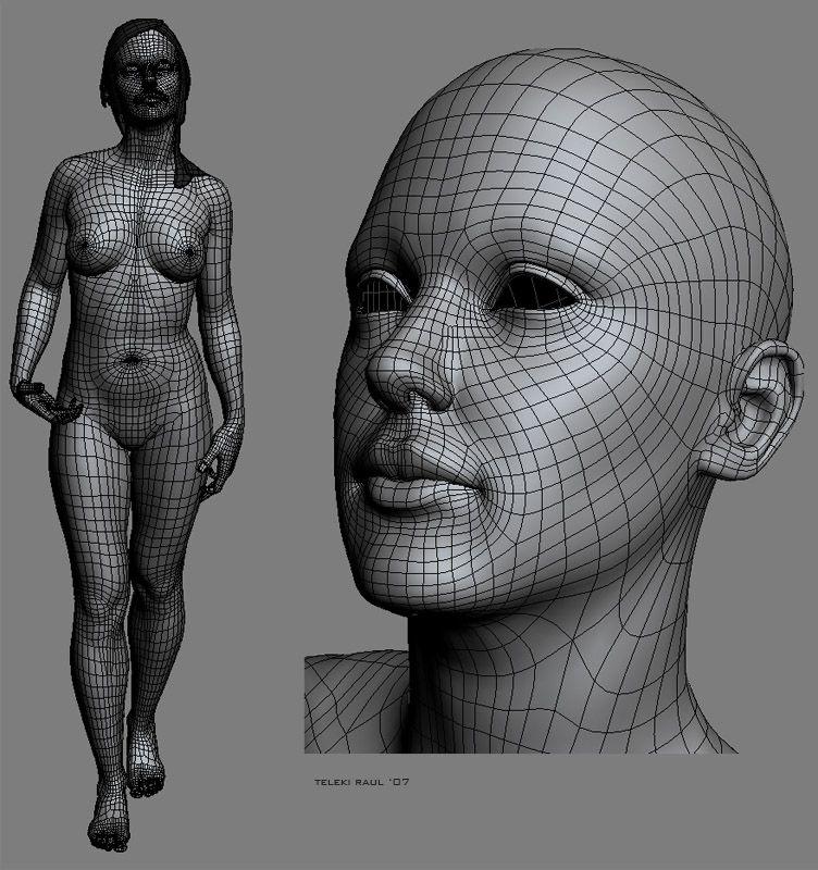 automob 3d anatomy tutorial - 752×800