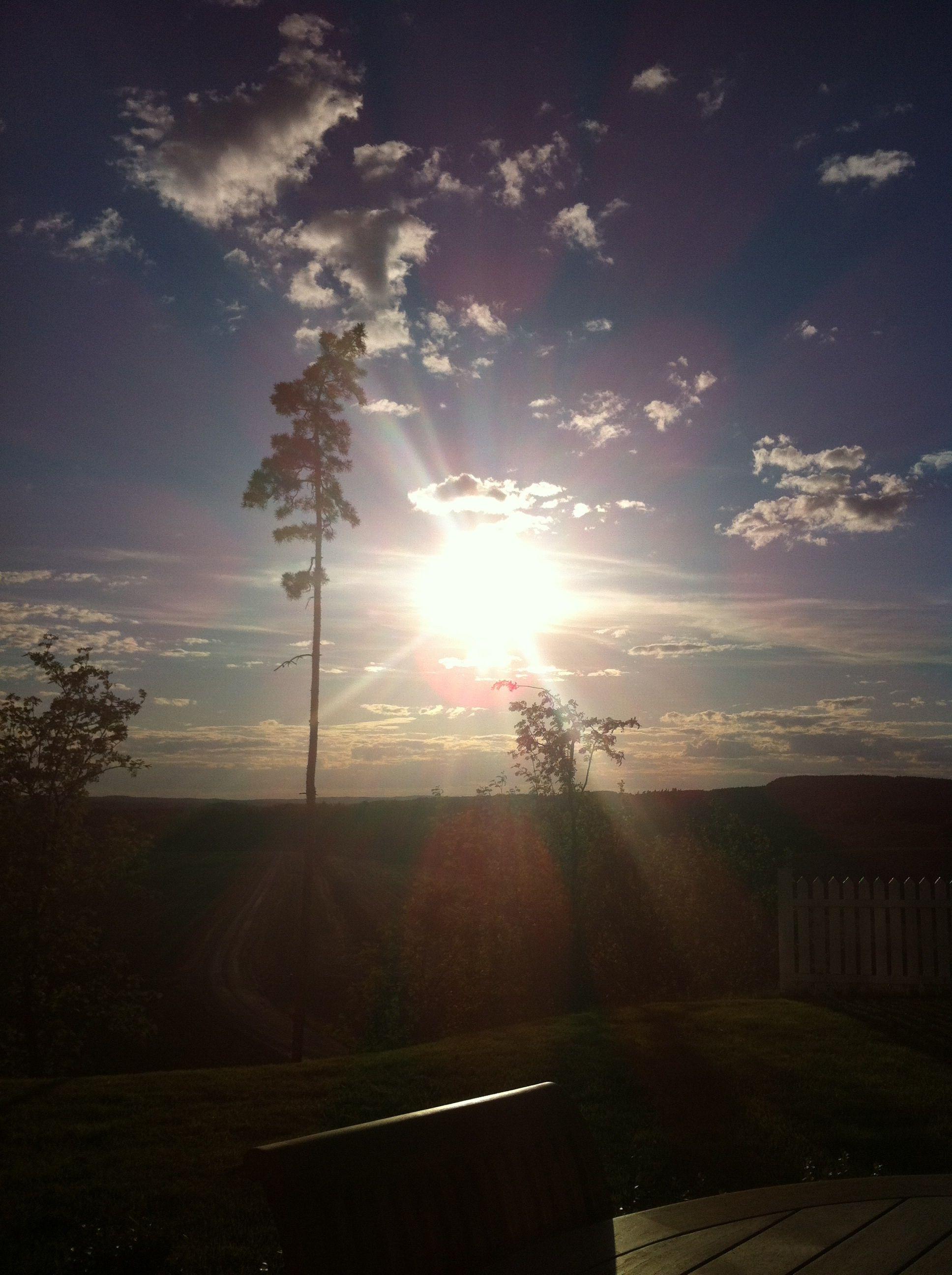 Solskinnsdag