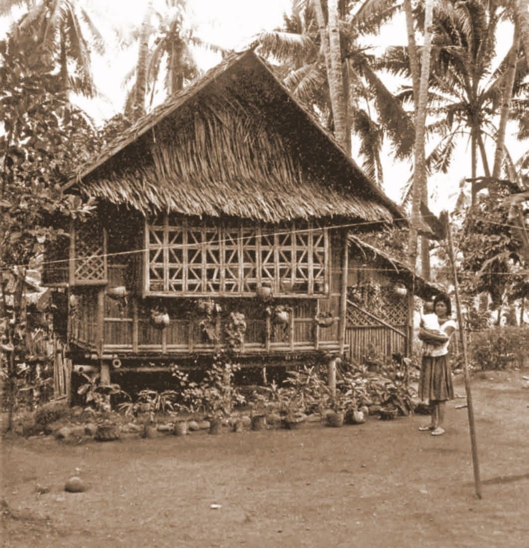Purchase Bamboo House Plans Traditional Bahay Kubo From
