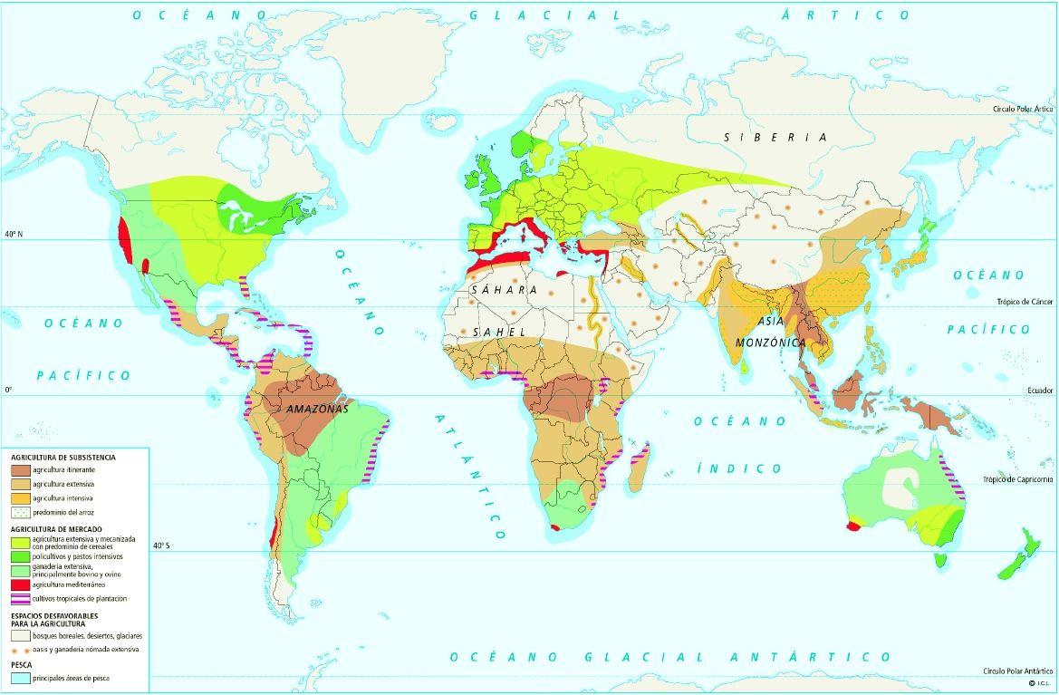 Sector Primario En El Mundo Jpg 1169 767 Map Education Map Screenshot