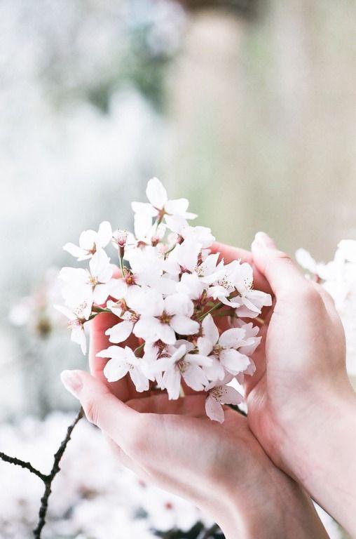 картинки для авы ватсап весна приостановился