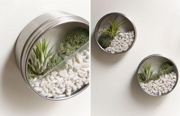 Frische wanddekoration mit pflanzen gr npflanzen pinterest - Pinterest fruhlingsdeko ...