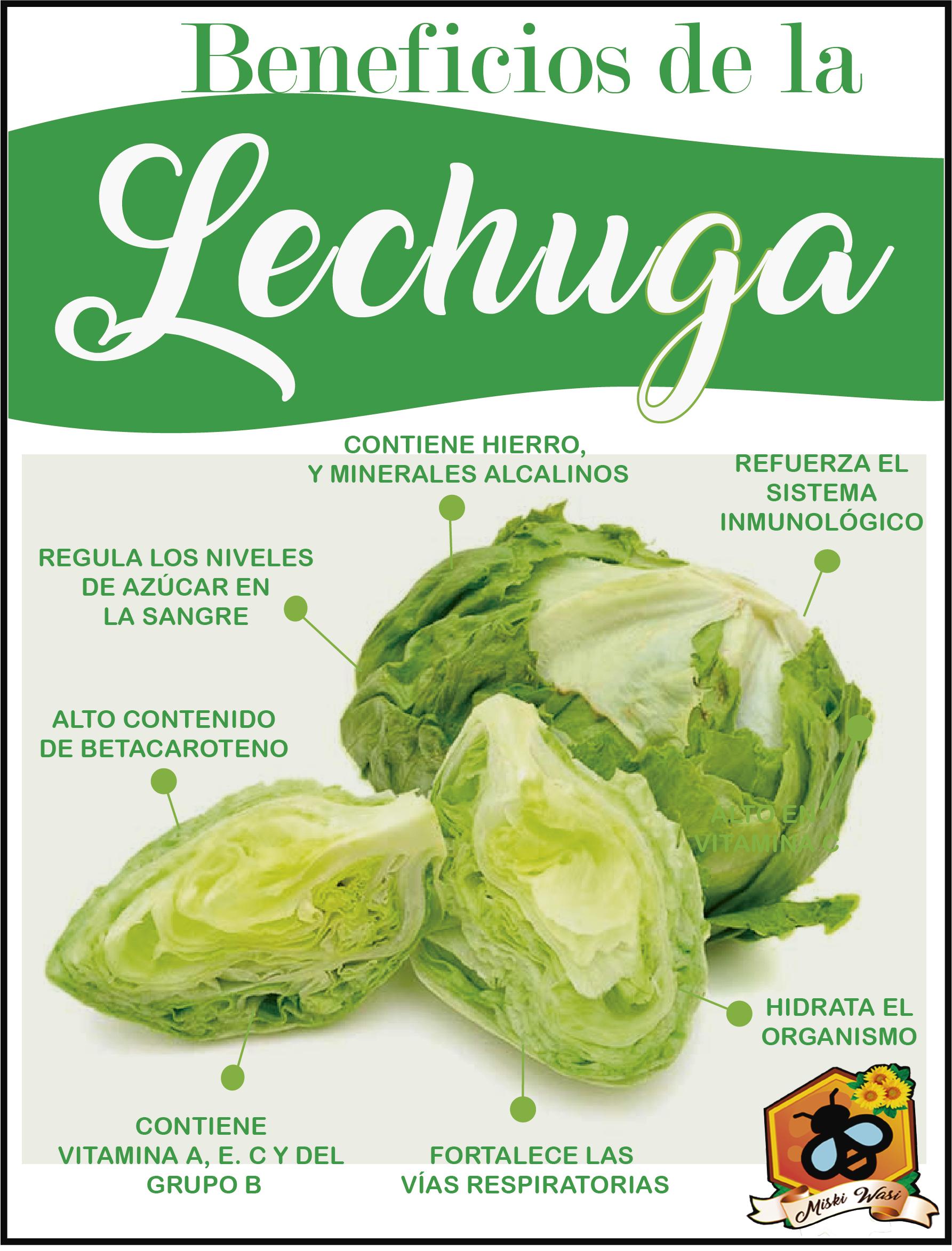 Beneficios De La Lechuga Beneficios De La Lechuga Frutas Y Verduras Beneficios Beneficios De Alimentos
