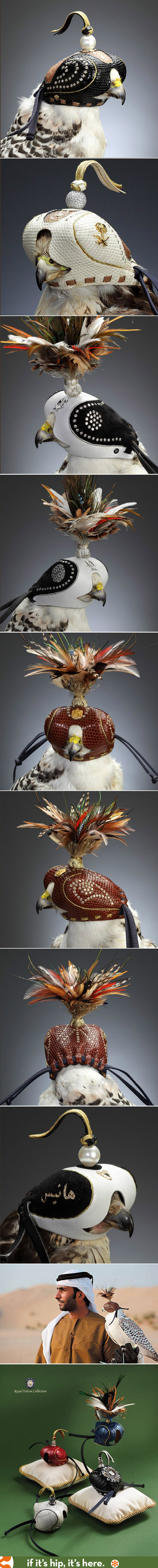 Stunning diamond-studded hoods for falconry. Wow.
