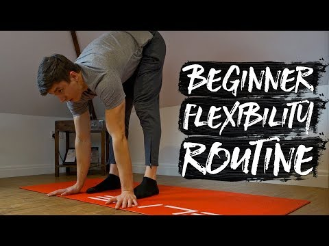5 15 minute beginner flexibility routine follow along