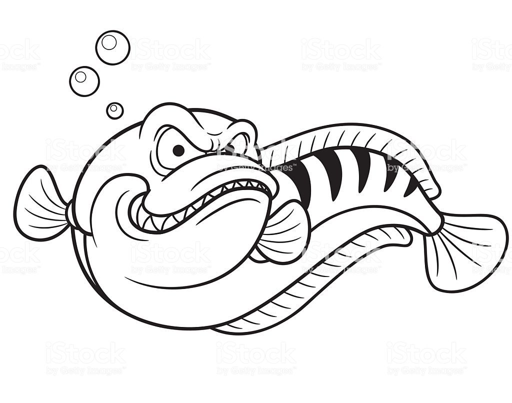 無料の印刷用ぬりえページ 50歳以上 魚 塗り絵 Vector Coloring Books Vector Illustration