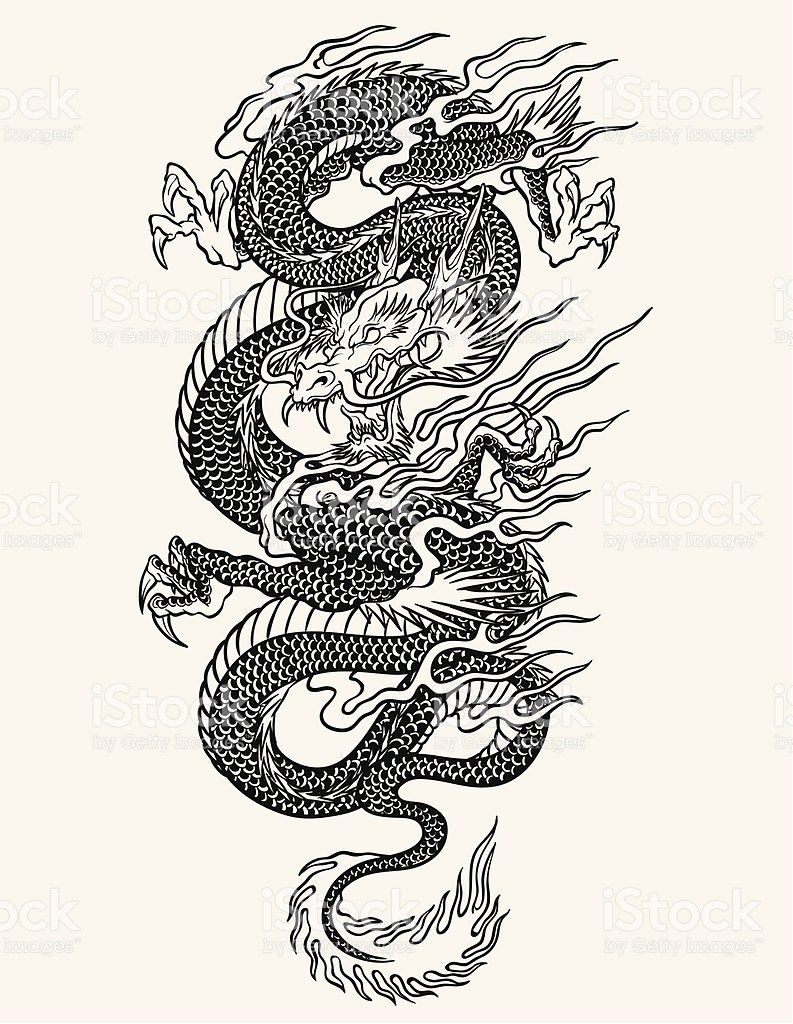 Highly Detailed Asian Dragon Tattoo Line Work Asian Dragon Free Vector Art Tattoo Free Design 3111 Asian Dragon Tattoo Dragon Tattoo Art Dragon Tattoo Sketch