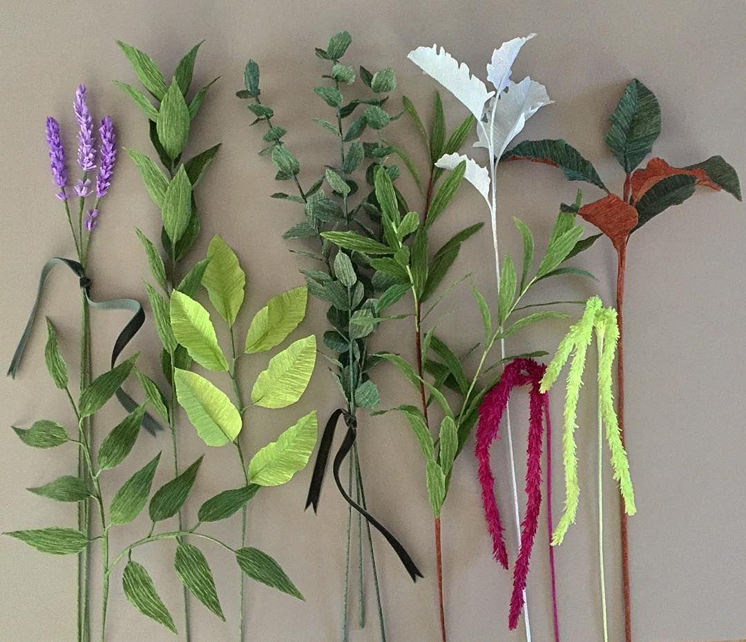 Greenery From Left To Right Lavender Italian Ruscus Israeli Lemon Leaf