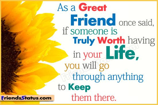 Friendship Quotes   As A Great Friend Once Said,If Someone Is Truly Worth  Having