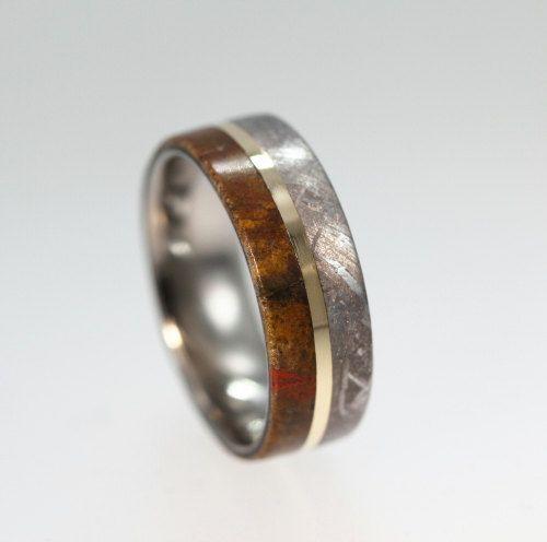 Meteorite Ring Dinosaur Bone Wedding Band With 14K Yellow Gold