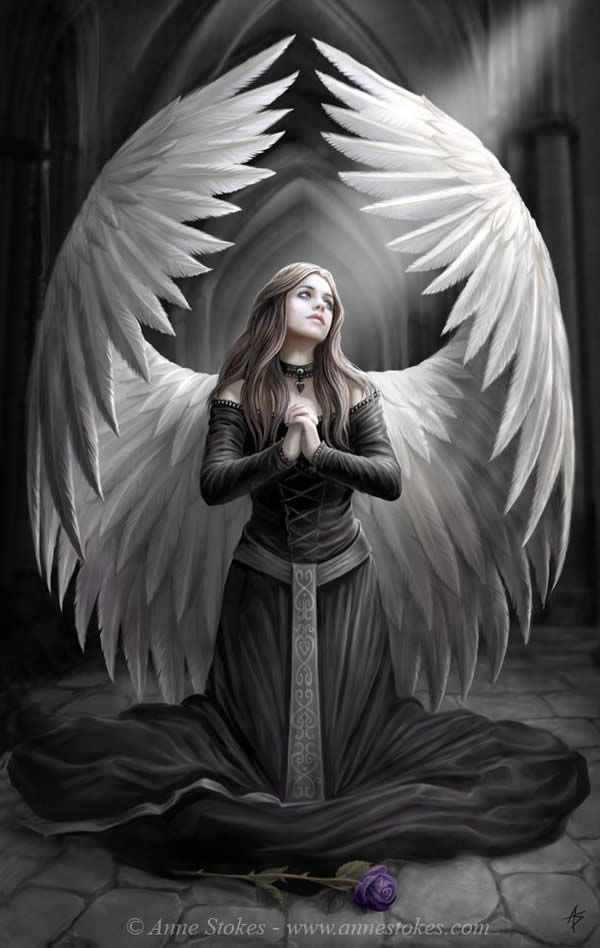 """I like the sheltering cupping of the wings. """"No one is perfect and perfectly holy but God alone"""". ~R. Alan Woods,~~ art by Anne Stokes"""