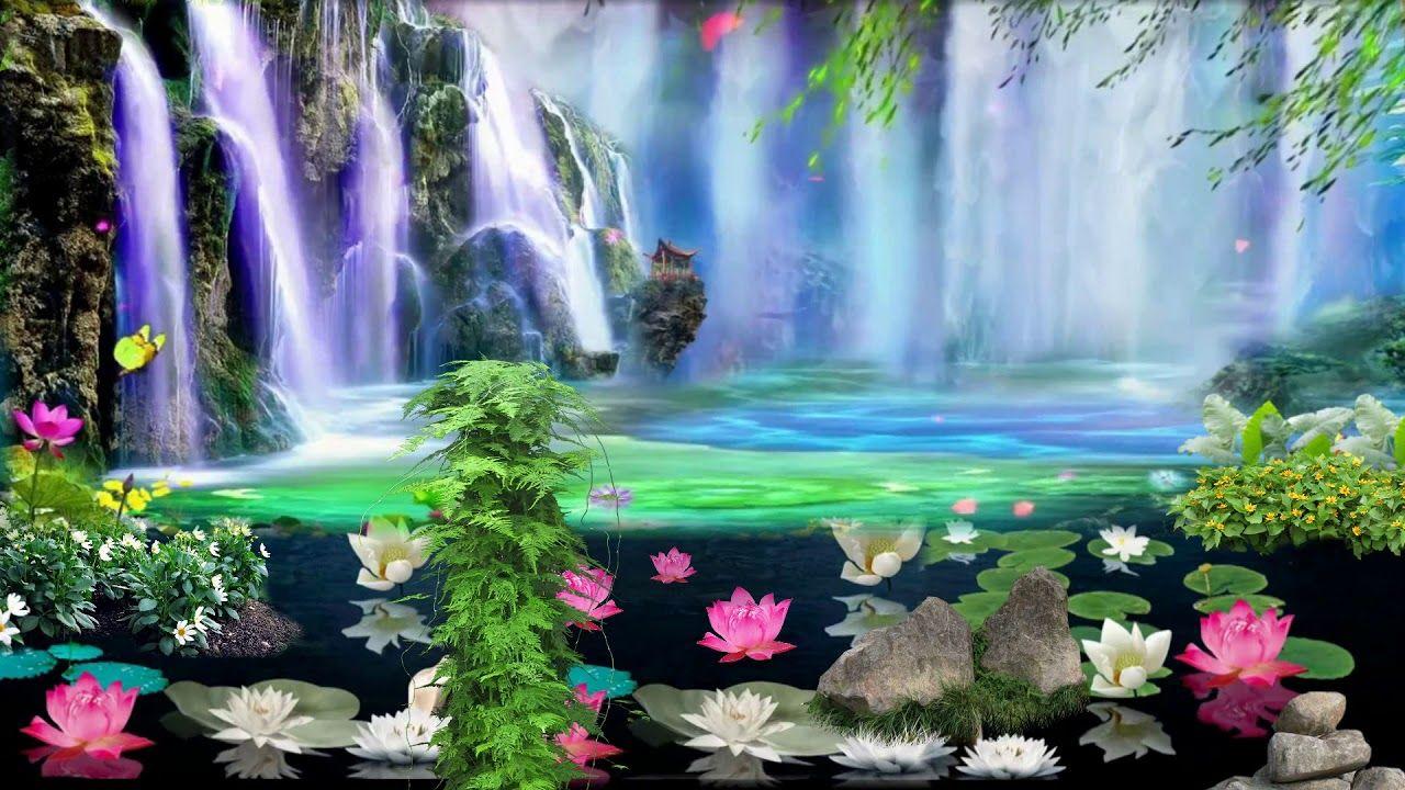 Nature Motion Video Background Vfx Graphics Wedding Video Background Eff Motion Images Video Background Wedding Video