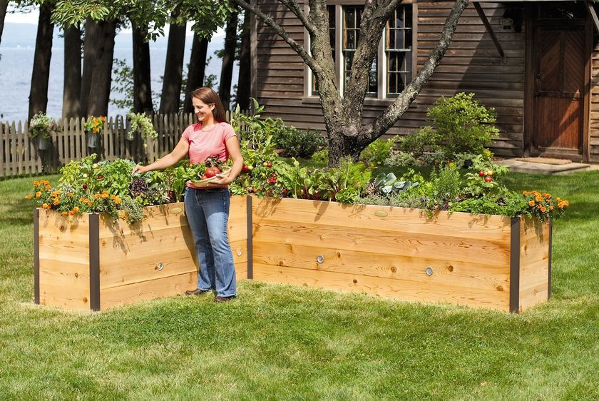 Elevated Cedar Raised Bed Kit Elevated Bed Made In Vermont High Raised Garden Beds Cedar Raised Garden Garden Beds