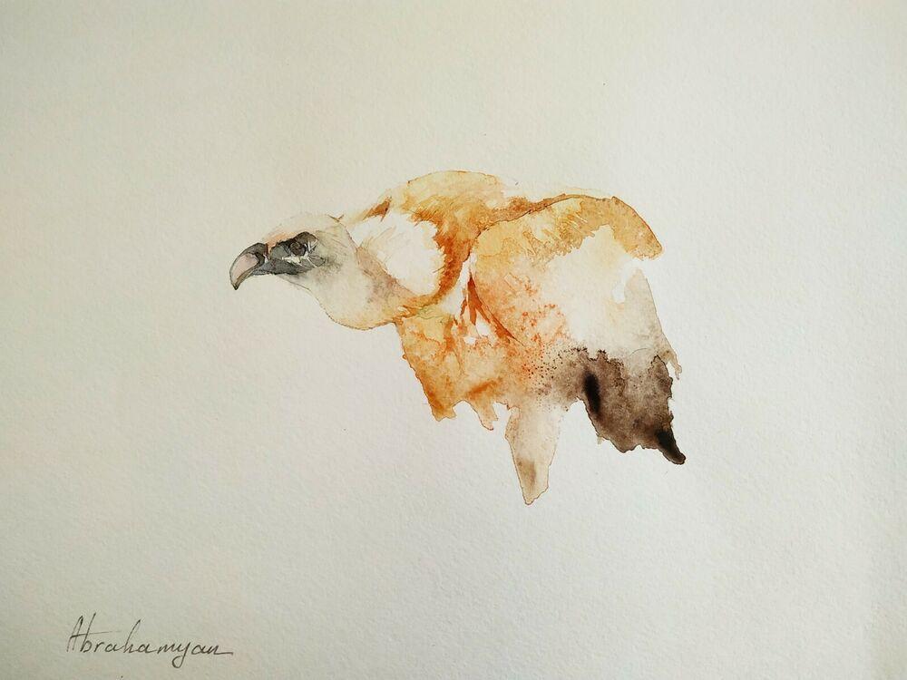 Vulture, Birds, Watercolor artwork, Handmade, Original painting on paper #Realism