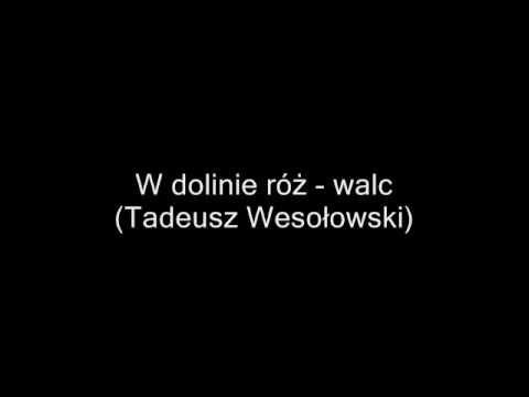 Z Temperamentem Zespol Tadeusza Wesolowskiego Promomix Karaoke Lockscreen Lockscreen Screenshot