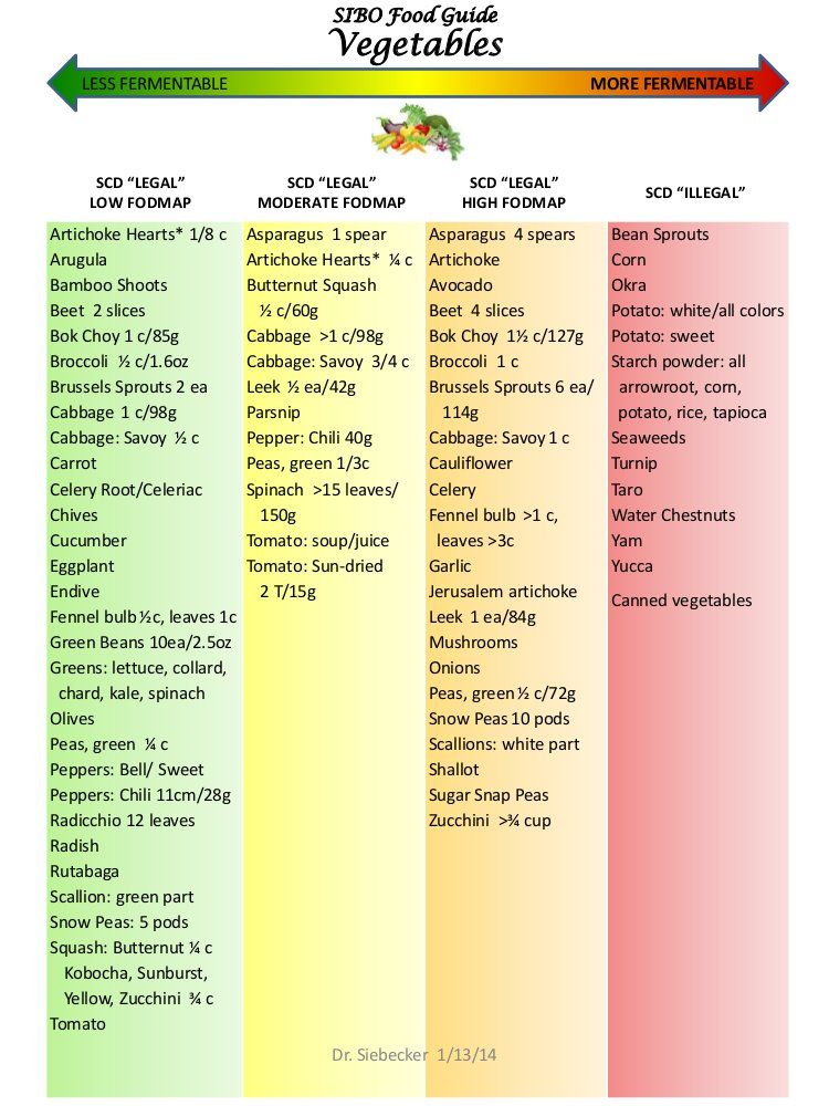 How to use the SIBO diet food chart developed by Dr Allison
