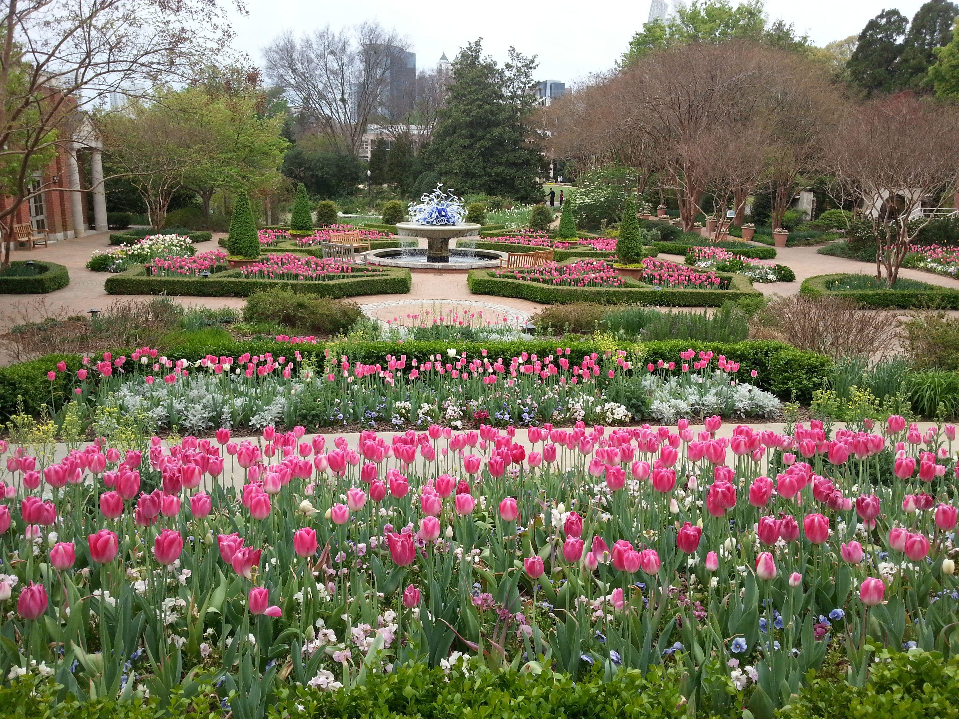 Rose Garden Atlanta Botanical Garden Early Spring Atlanta
