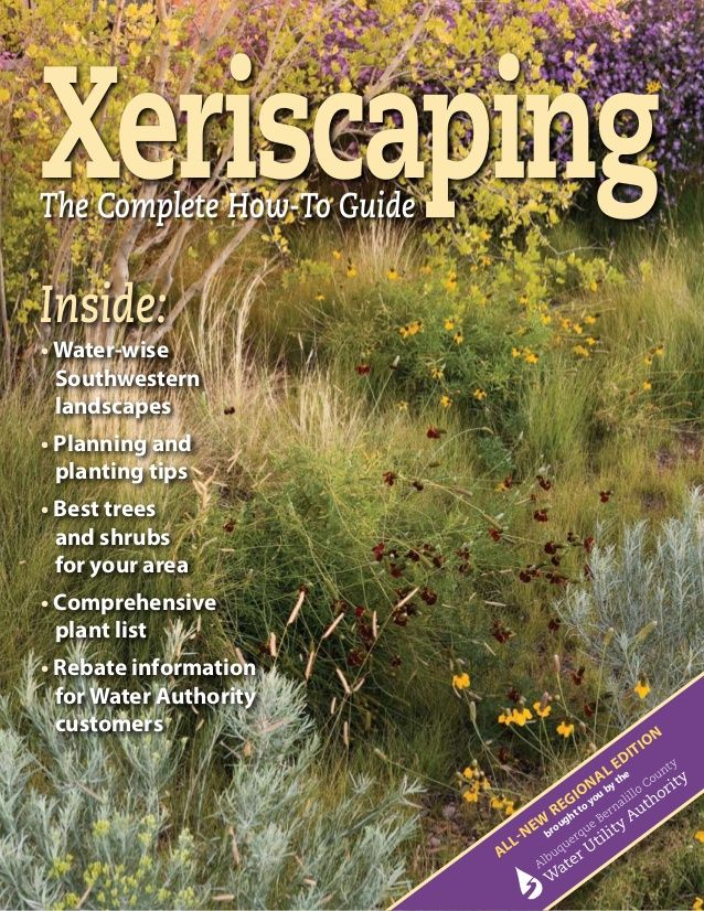 Xeriscaping The Complete How To Guide Albuquerque New Mexico