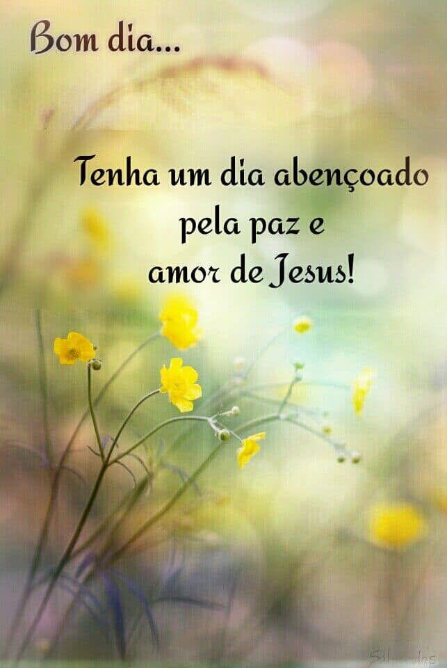 Bom Dia Tenha Um Dia Abencoado Pela Paz E Amor De Jesus