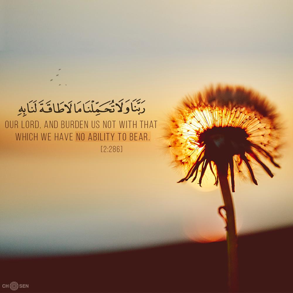 ر ب ن ا و ل ا ت ح م ل ن ا م ا ل ا ط اق ة ل ن ا ب ه Beautiful Quran Quotes Quran Verses Islamic Quotes Quran