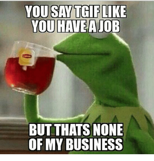 Pin On Kermit None Of My Business