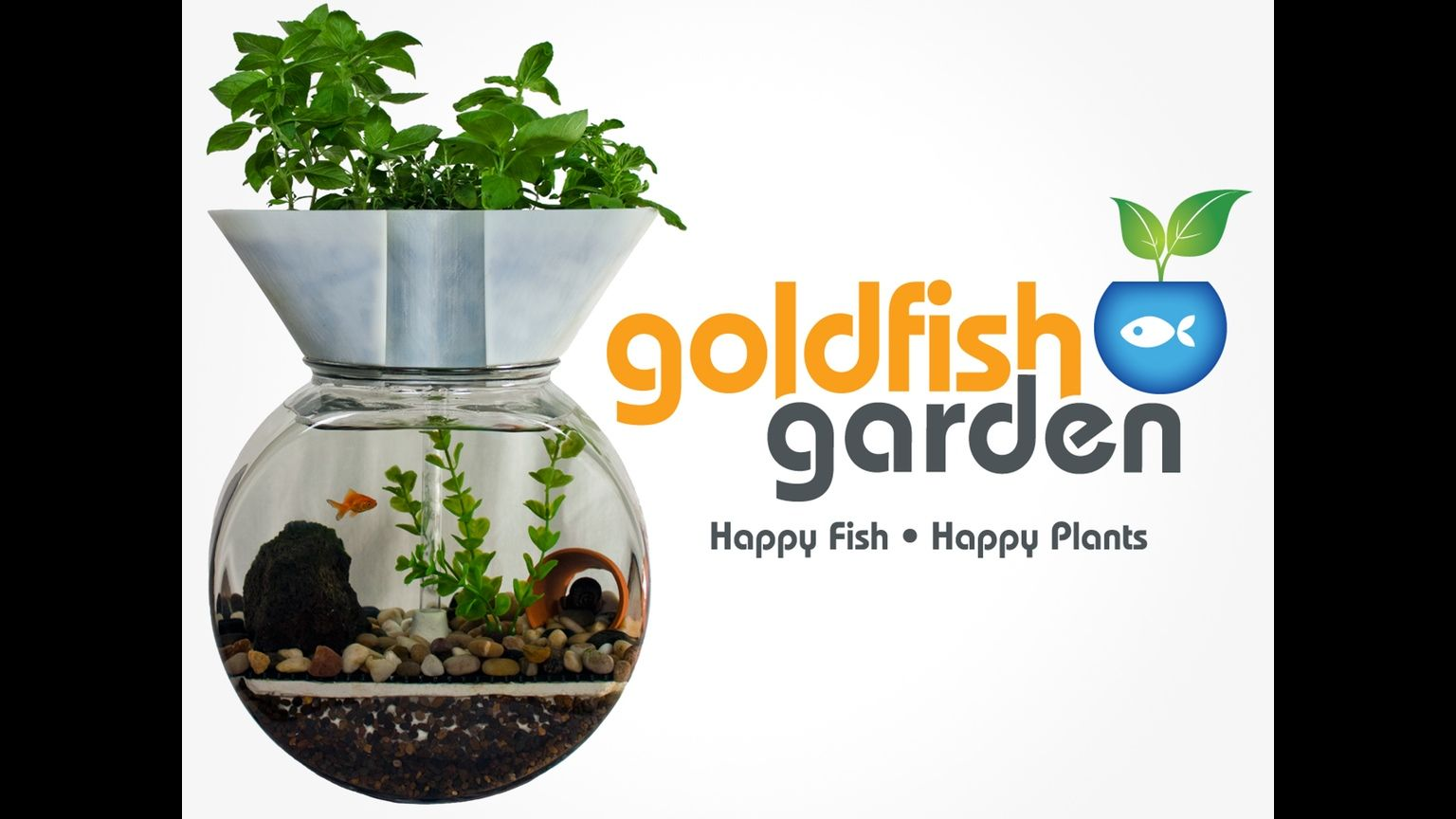 The goldfish garden is a selfcleaning aquaponic aquarium that uses