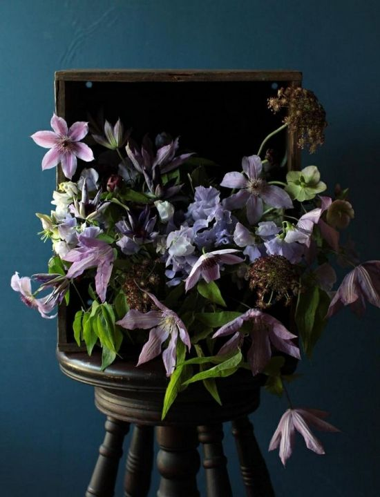 Interior Color, flowers, still life. Blue walls
