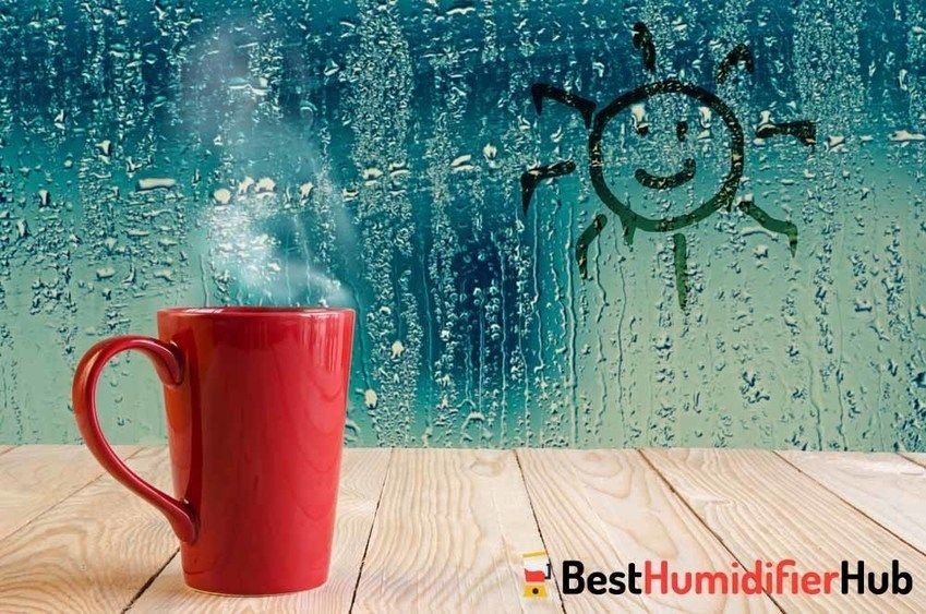 Ideal Comfortable Humidity Level At Your Home Best Humidifier