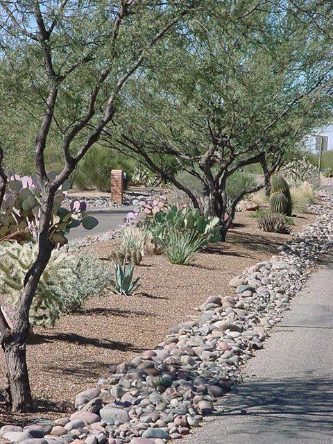 hot desert landscaping - commercial