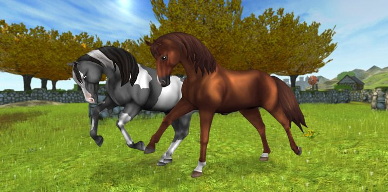 Pin by Abby B on Star Stable Star stable horses, Horse