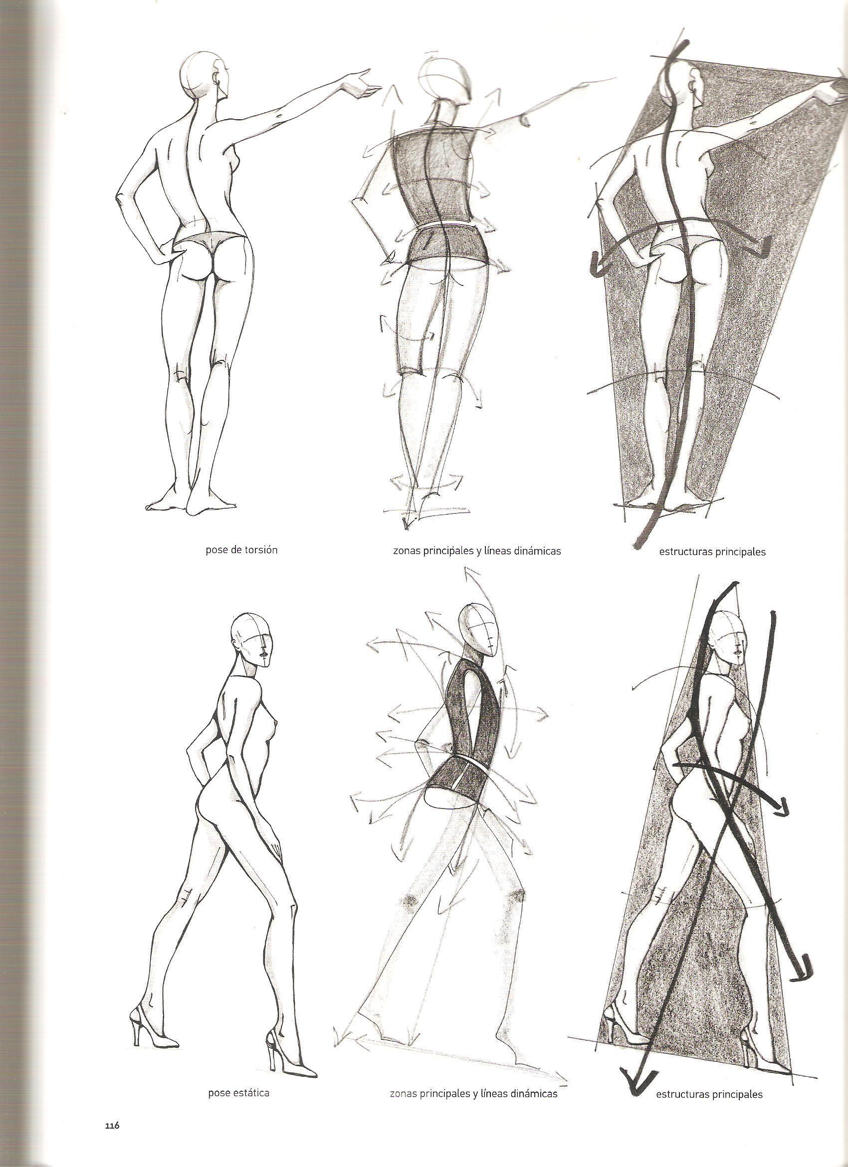 Hermosa Dibujo De La Anatomía De La Moda Bandera - Anatomía de Las ...