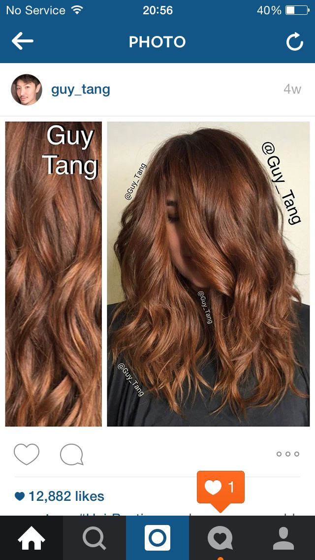 Guy Tang Copper Tone Warm Brown Hair Hair Color Auburn Hair Painting Copper Brown Hair