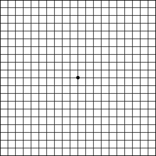 This is a picture of Fan Printable Amsler Grid