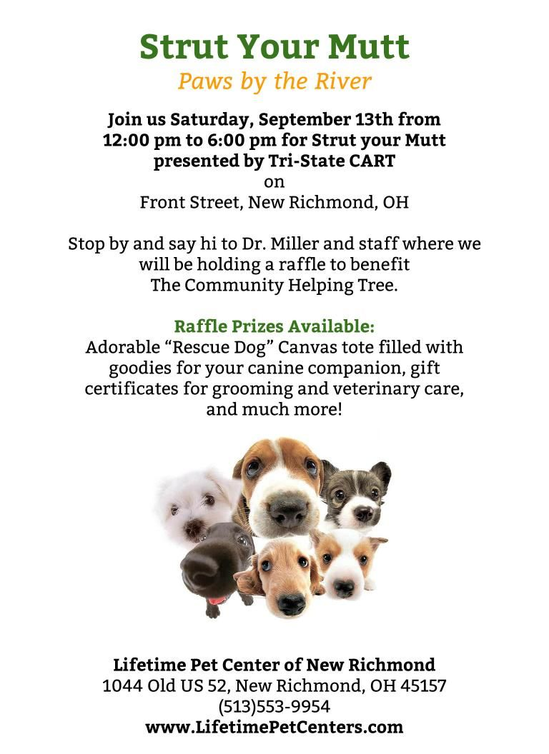 Join Us At This Year S Strut Your Mutt Paws By The River Presented By Tri State Cart Adoption Events Dog Parades Picnic With Yo New Richmond Event Mutt