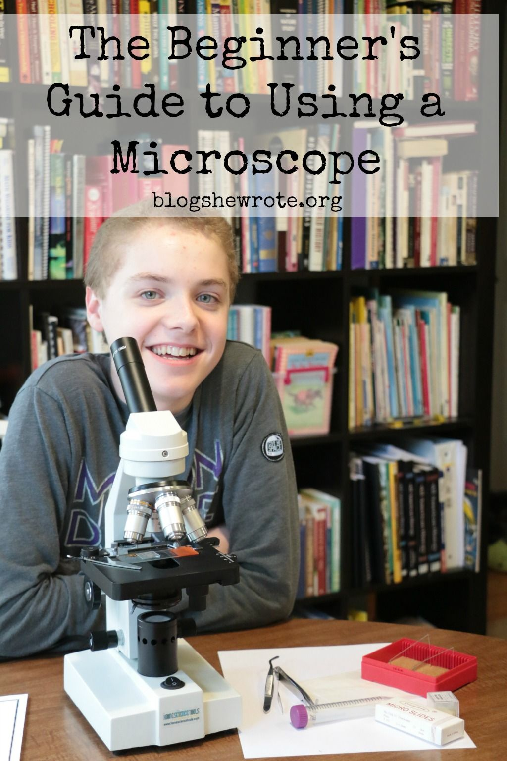 The Beginner S Guide To Using A Microscope With Images