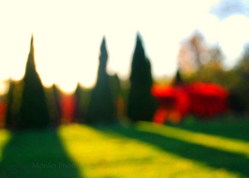 SALE 25 OFF Autumn PhotographyThe October by ara133photography, $7.50