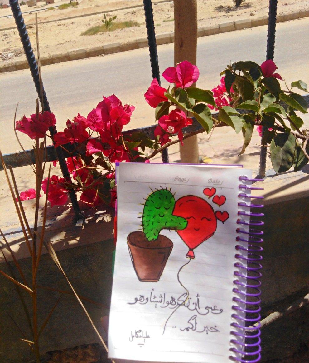وعسي ان تكرهوا شيئا وهو خير لكم علياء كامل Aliaa Kamel دعاء ايات رمضان صيام قيام شجر تصوير اوراق اقتباسات صباح رسائل صب Planters Planter Pots